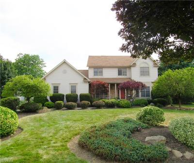 Copley Single Family Home For Sale: 4210 Kingsbury Blvd