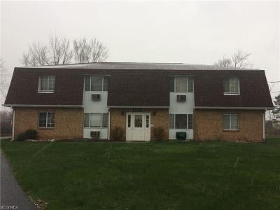 Youngstown Multi Family Home For Sale: 152 Stadler Ct