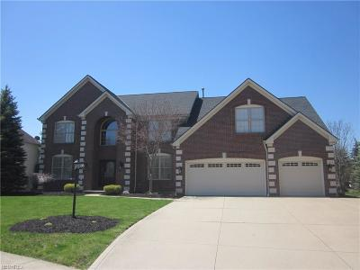 Strongsville Single Family Home For Sale: 11690 Fox Grove