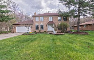 North Royalton Single Family Home For Sale: 9840 Applewood Dr
