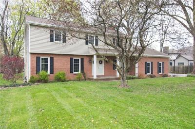 Canfield Single Family Home For Sale: 5225 Tippecanoe Rd