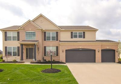 Strongsville Single Family Home For Sale: 12503 Countryside Dr