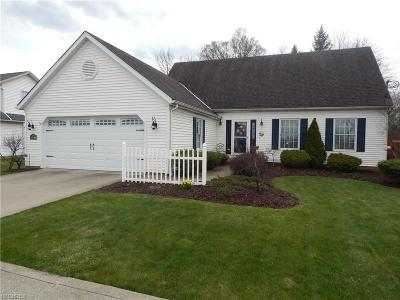 Twinsburg Single Family Home For Sale: 10740 Ravenna Rd