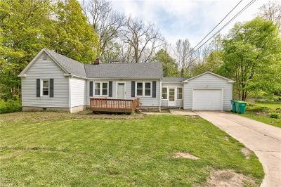 Kirtland Single Family Home For Sale: 8154 Chillicothe Rd