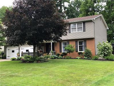 Youngstown Single Family Home For Sale: 143 Spring Garden Dr