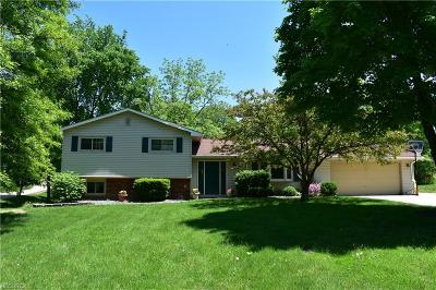 Strongsville Single Family Home For Sale: 18717 Benbow Rd
