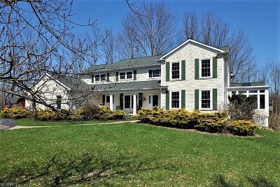 Geauga County Single Family Home For Sale: 13598 Fox Hill Dr