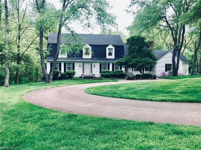 Summit County Single Family Home For Sale: 385 North Hametown Rd