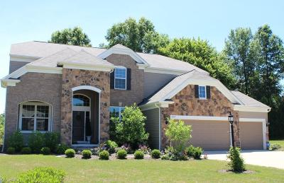 Copley Single Family Home For Sale: 4262 Bentley Dr