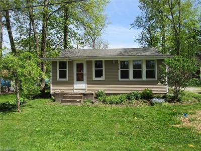 Chippewa Lake Single Family Home For Sale: 552 Twilight Trl