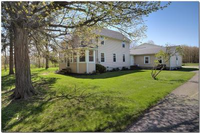 Mentor Single Family Home For Sale: 8776 Headlands Rd