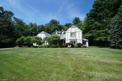 Chagrin Falls Single Family Home For Sale: 820 Sun Ridge Ln