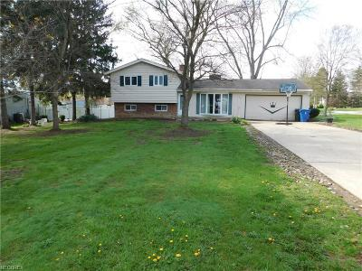 Summit County Single Family Home For Sale: 786 Chenook Trl