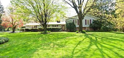 Chagrin Falls Single Family Home For Sale: 8341 Clover Ln