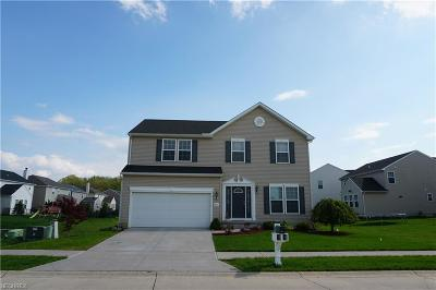 North Ridgeville Single Family Home For Sale: 38375 Noah Ln