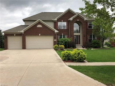 Aurora Single Family Home For Sale: 3073 Willowbrook Dr