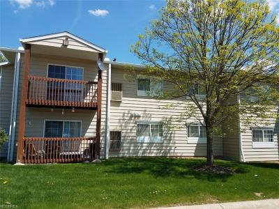 Twinsburg Condo/Townhouse For Sale: 10373 Glenway Dr #201
