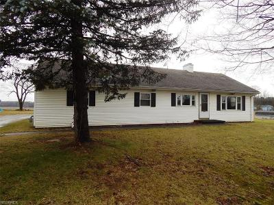 Medina Single Family Home For Sale: 6804 Wooster Pike
