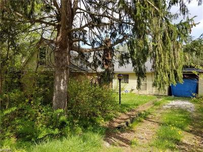 Brunswick Single Family Home For Sale: 4519 Chestnut Ave