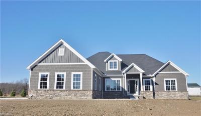 Medina Single Family Home For Sale: 2951 Fawn Lake