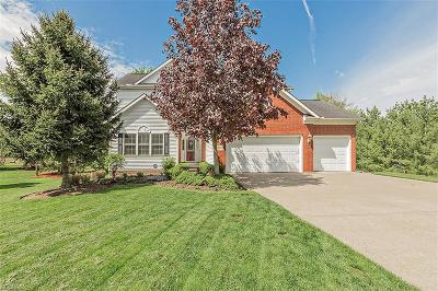 Solon Single Family Home For Sale: 6630 Andre Ln
