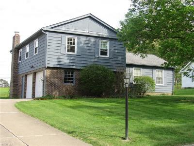 Aurora Single Family Home For Sale: 841 South Parkview Dr