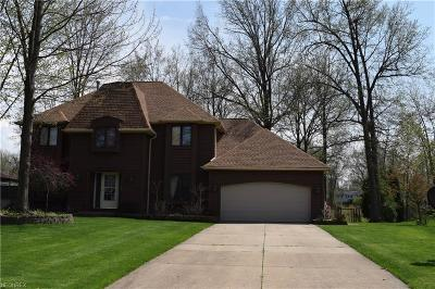 Mentor Single Family Home For Sale: 6756 Silvermound Dr