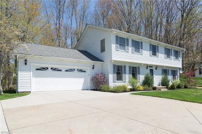 Chagrin Falls Single Family Home For Sale: 40 Heather Ct