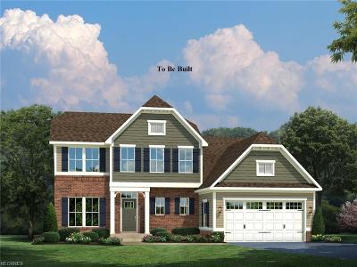 Medina Single Family Home For Sale: 6853 Maplebrooke Trace