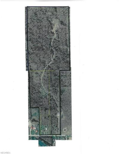 Medina Residential Lots & Land For Sale: 6038 Lake Rd