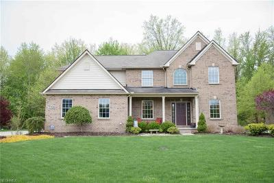 Avon Single Family Home For Sale: 33093 Saint James Trl