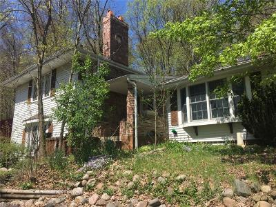 Wadsworth Single Family Home For Sale: 515 Sharon Copley Rd