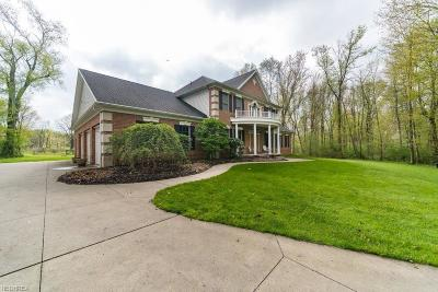 Summit County Single Family Home For Sale: 6163 Spangler Dr