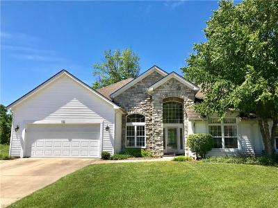 Highland Heights Single Family Home For Sale: 352 Gretna Green Rd