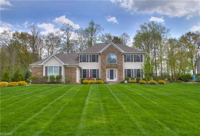 Lake County Single Family Home For Sale: 6649 Deer Haven Rd
