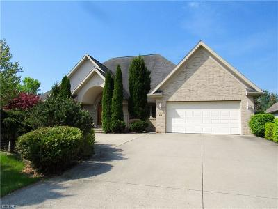 Summit County Single Family Home For Sale: 426 English Tern Dr