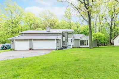 Avon, Avon Lake Single Family Home For Sale: 187 Williamsburg Dr