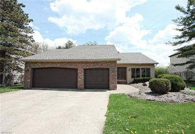Deerfield Lake Single Family Home For Sale: 19385 Misty Lake Dr