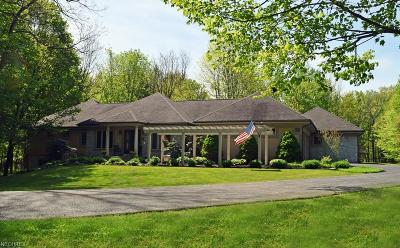Geauga County Single Family Home For Sale: 12399 Stafford Rd