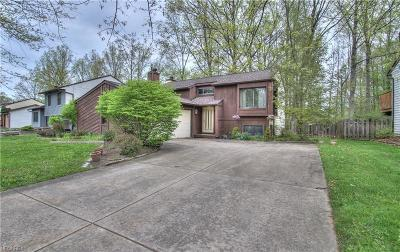 Willoughby Single Family Home For Sale: 2925 Reeves Rd
