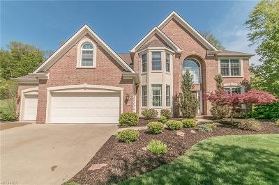 North Royalton Single Family Home For Sale: 10785 Montauk Pt