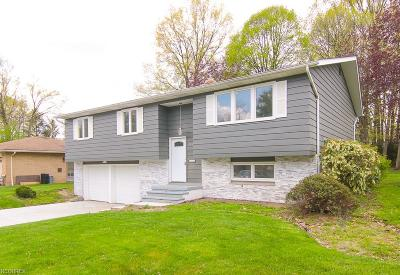 Seven Hills Single Family Home For Sale: 1064 East Dartmoor Ave