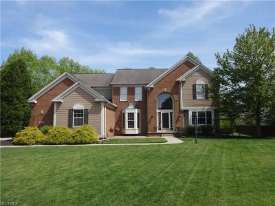 Twinsburg Single Family Home For Sale: 2949 Tucker Ct