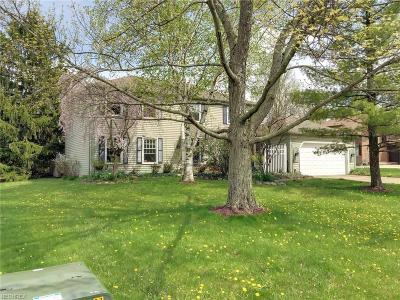 Deerfield Lake Single Family Home For Sale: 18159 Fern Canyon Dr