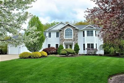 Solon Single Family Home For Sale: 6737 Ayleshire Dr