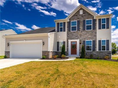 Wadsworth Single Family Home For Sale: 399 Buckingham Grove