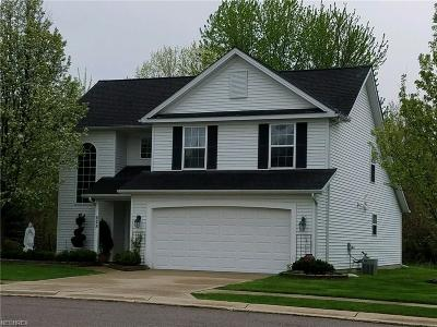 Painesville Condo/Townhouse For Sale: 628 Beacon Dr