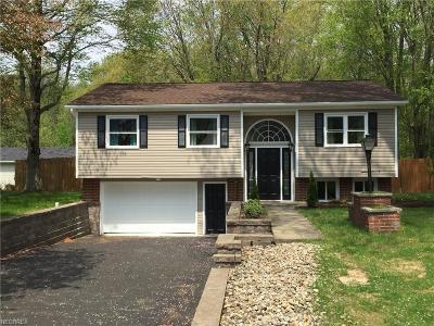 Newton Falls Single Family Home For Sale: 2847 Malibu Dr Southwest