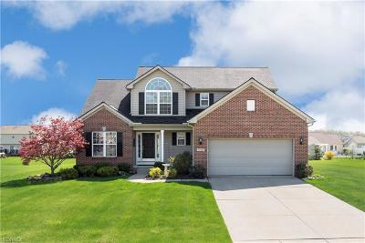 North Ridgeville Single Family Home For Sale: 5129 Weatherstone Dr
