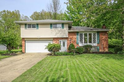 Mentor Single Family Home For Sale: 6243 Bryson Dr